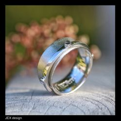 Spinnerring